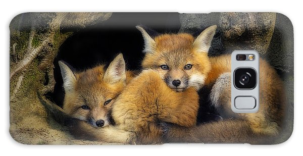 Best Friends - Fox Kits At Rest Galaxy Case
