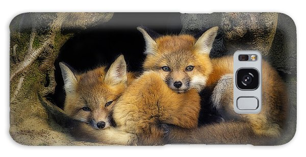 Best Friends - Fox Kits At Rest Galaxy Case by John Vose