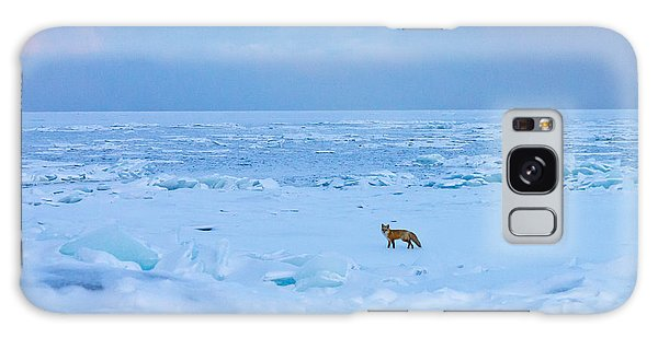 Fox Of The North Country Iv Galaxy Case by Mary Amerman