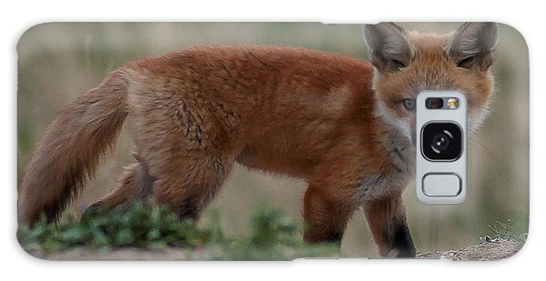 Fox Pup Galaxy Case by Steven Reed