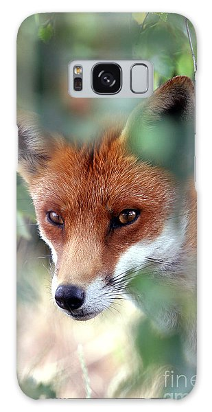 Fox Through Trees Galaxy Case