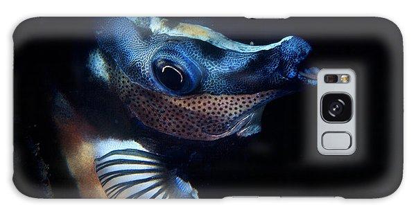 Foxface Rabbitfish Galaxy Case