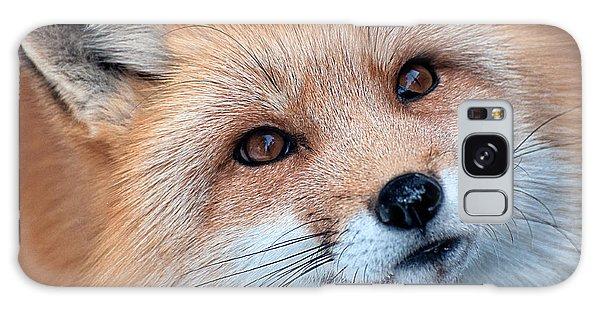 Foxy Lady Galaxy Case by Bianca Nadeau