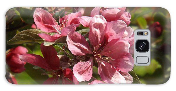 Fragrant Crab Apple Blossoms Galaxy Case by Brenda Brown
