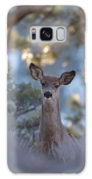 Framed Deer Head And Shoulders Galaxy Case by Duncan Selby