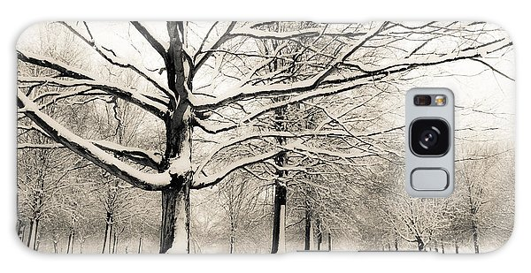 Francis Park In Snow Galaxy Case by Scott Rackers