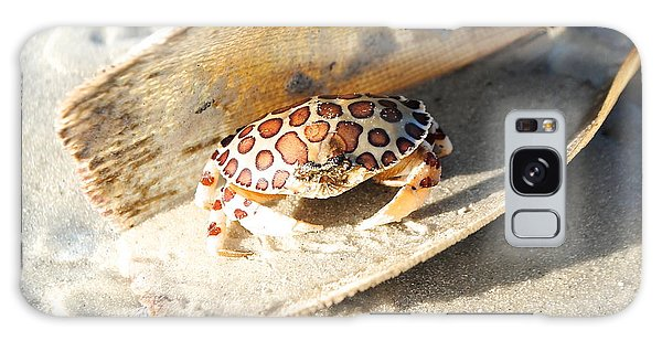 Frank The Spotted Crab Of Anna Maria Galaxy Case by Margie Amberge