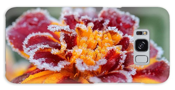 Galaxy Case - French Marigold Named Durango Red Outlined With Frost by J McCombie