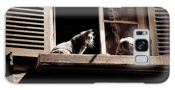 French Windowsill Cats In The Sun Galaxy Case