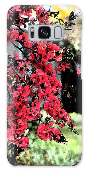Quince Flowers Galaxy Case