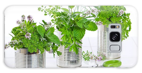 Recycle Galaxy Case - Fresh Herbs In Recycled Cans by Amanda Elwell