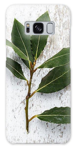 Herbs Galaxy Case - Fresh Laurel by Nailia Schwarz