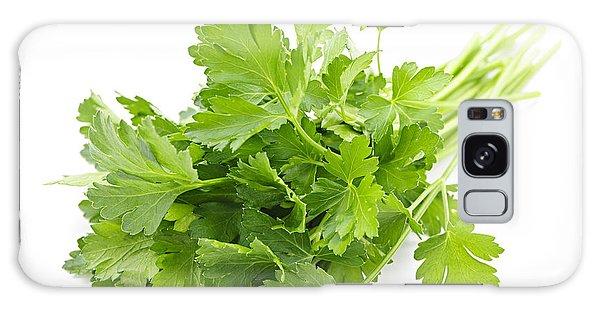 Herbs Galaxy Case - Fresh Parsley by Elena Elisseeva