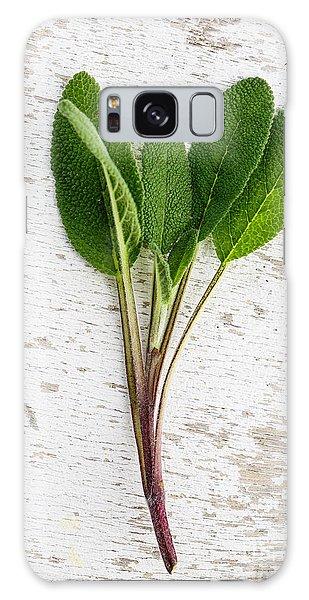 Herbs Galaxy Case - Fresh Sage by Nailia Schwarz