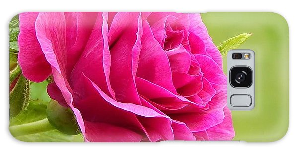 Friendship Rose Galaxy Case