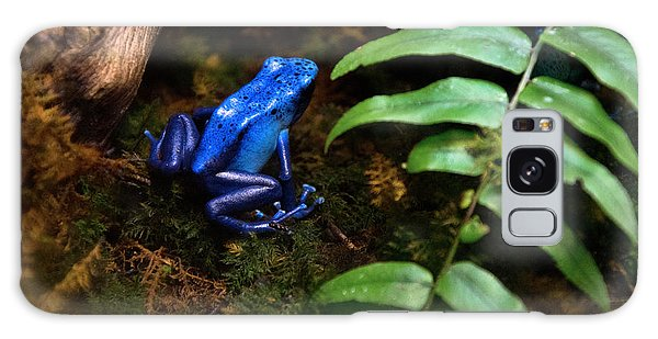 Frog Blues Galaxy Case