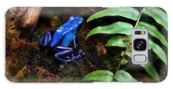 Frog Blues Galaxy Case