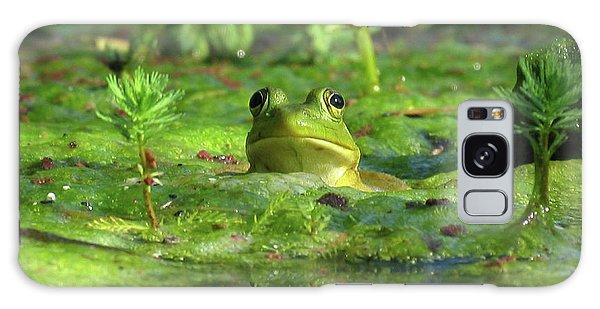 Frog Galaxy Case by Douglas Stucky