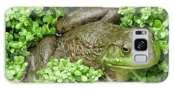 Frog Galaxy Case by DejaVu Designs