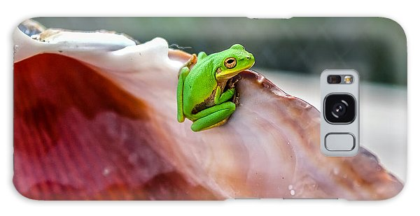 Frog In A Cockle Galaxy Case by Rob Sellers