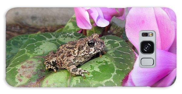 Frog On Cyclamen Plant Galaxy Case