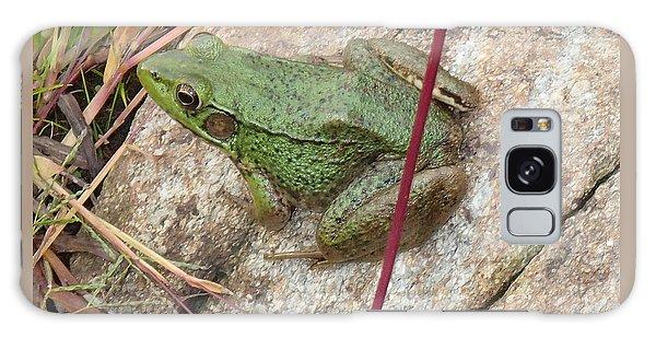 Frog Galaxy Case