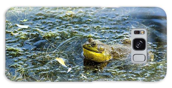 Frog Song Galaxy Case