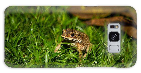 Froggie Galaxy Case by Mike Lee
