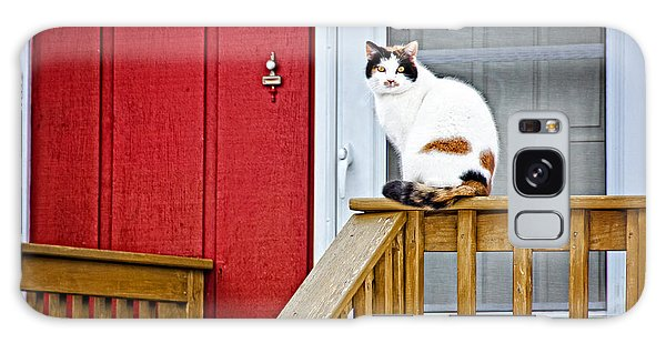 Front Porch Cat Galaxy Case