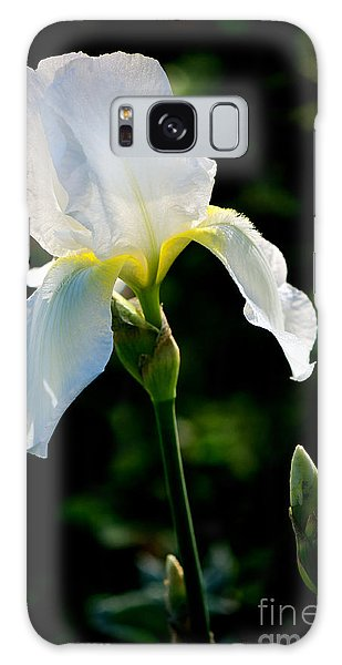 Front Yard Iris Galaxy Case by Vinnie Oakes