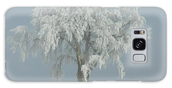 Frost Covered Lone Tree Galaxy Case by Penny Meyers