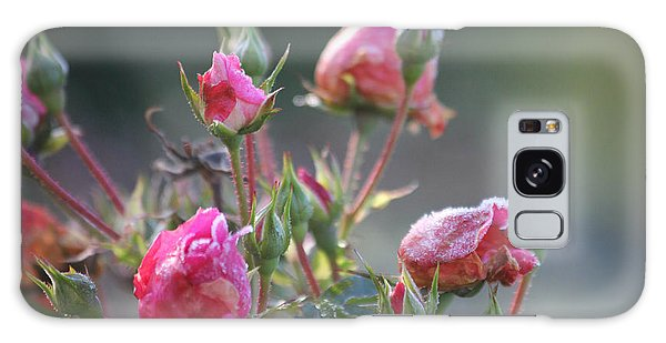 Frost Kissed Roses Galaxy Case by Katie Wing Vigil