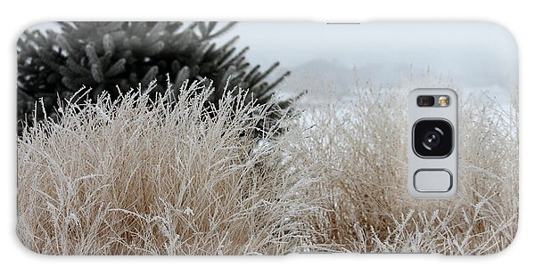 Frosted Grasses Galaxy Case
