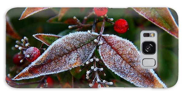 Frosted Nandina Leaves Galaxy Case