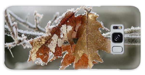 Frosted Oak Galaxy Case