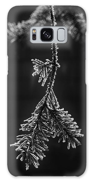 Frosted Pine Branch Galaxy Case