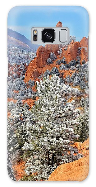 Frosted Wonderland 1 Galaxy Case by Diane Alexander