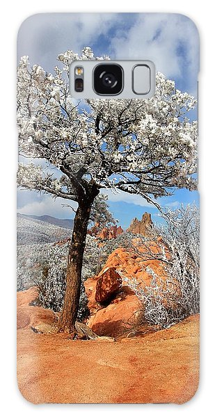Frosted Wonderland 3 Galaxy Case by Diane Alexander