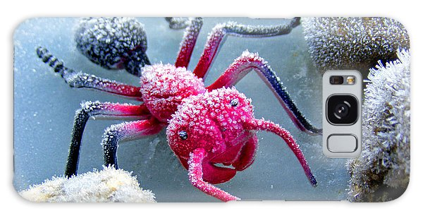 Frosty Ant In Winter Galaxy Case