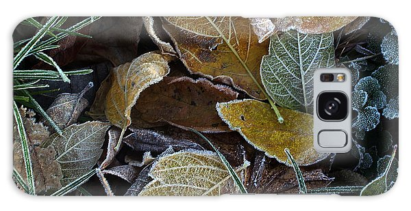 Frosty Autumn Leaves Galaxy Case