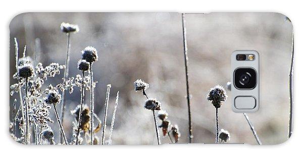 Frosty Flowers Galaxy Case