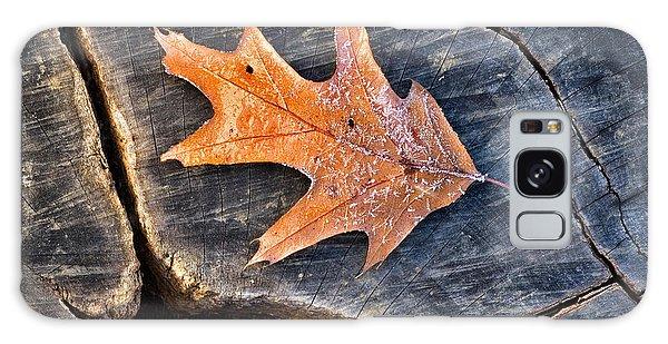 Frosty Leaf On Tree Trunk Galaxy Case by Gary Slawsky