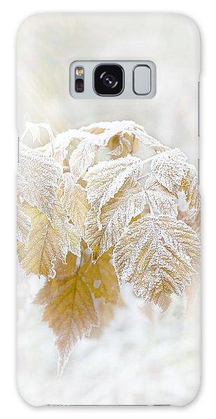 Frosty Leaves Galaxy Case