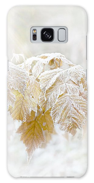 Frosty Leaves Galaxy Case