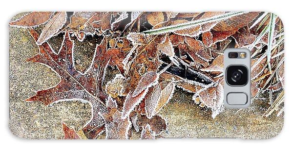Frosty Morn Galaxy Case
