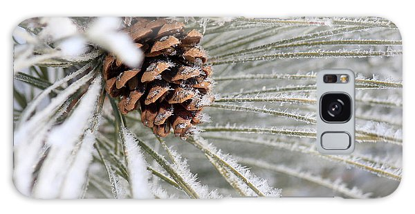 Frosty Norway Pine Galaxy Case by Penny Meyers