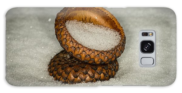 Frozen Acorn Cupule Galaxy Case by Paul Freidlund