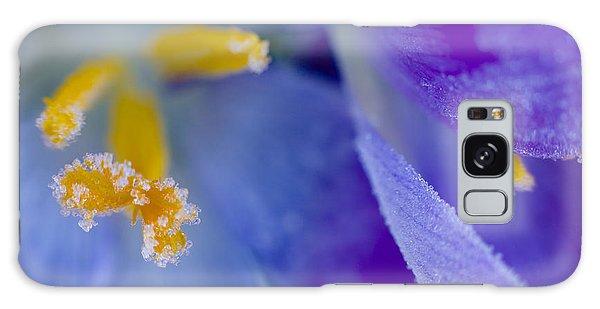 Frozen Crocus Galaxy Case