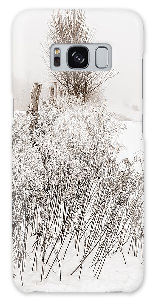 Frozen Fog On A Hedgerow - Bw Galaxy Case