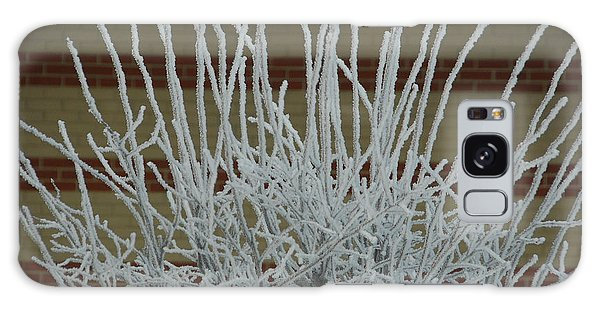 Frozen Fog On Bush Galaxy Case